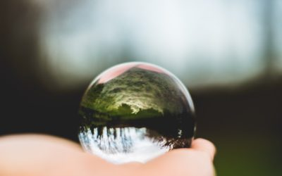 When your client shows up…with her crystal ball.